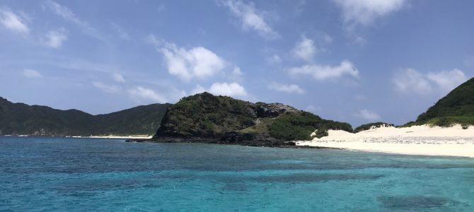 南の島から