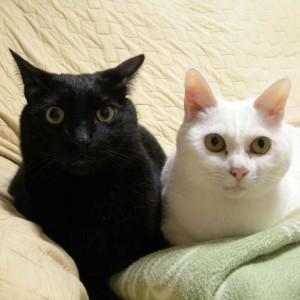kuro&nana