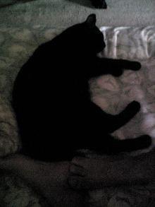 アロマ香るJR芦屋の美容室&アロマ・フェイシャル・リラクゼーションサロン ア クール-120714_072024.jpg