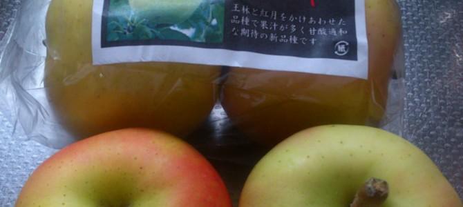今朝のリンゴ/トキ