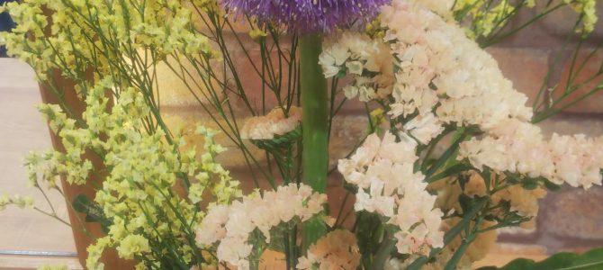 今週のお花「花火」