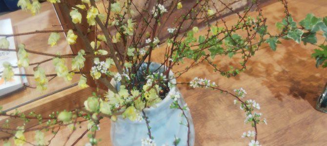 春は肝の季節